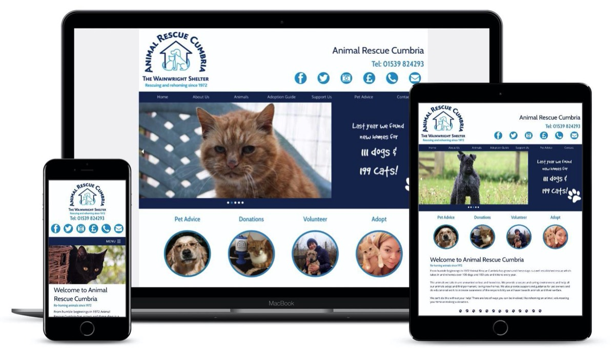 Pineapplelily Web design for animal shelter in the Lake District in cumbria